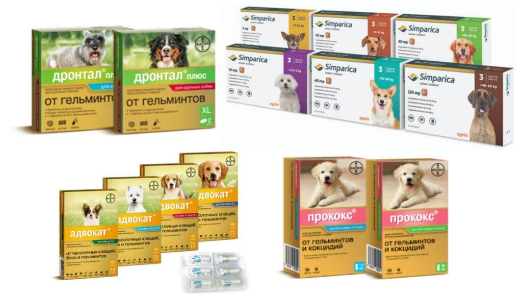 препараты от глистов для собаки